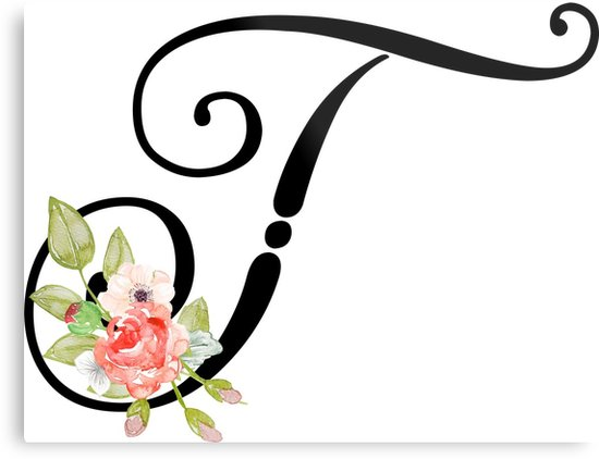 Graphic designing, logo designing, photo editing