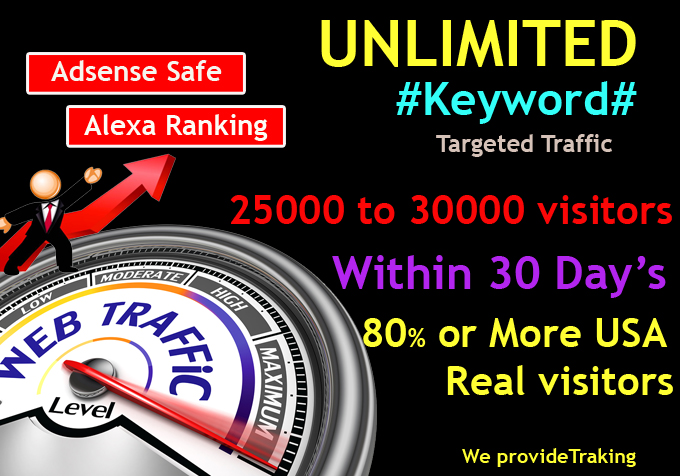 UNLIMITED Human Web Traffic, Real Organic Google Twitter ect.. Traffic