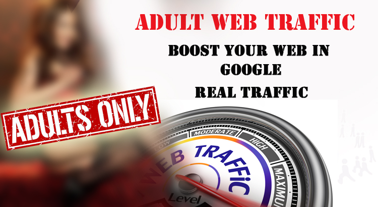 I will provide 30,000 adult human visitors,  traffic any kind of website