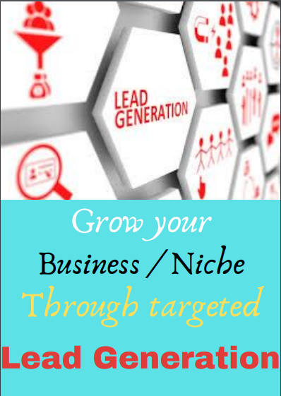 I will do for you b2b lead generation,  email list building and web research
