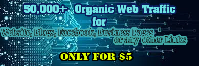 50,000+ High Quality Organic Traffic Website Worldwide with Low Bounce Rate