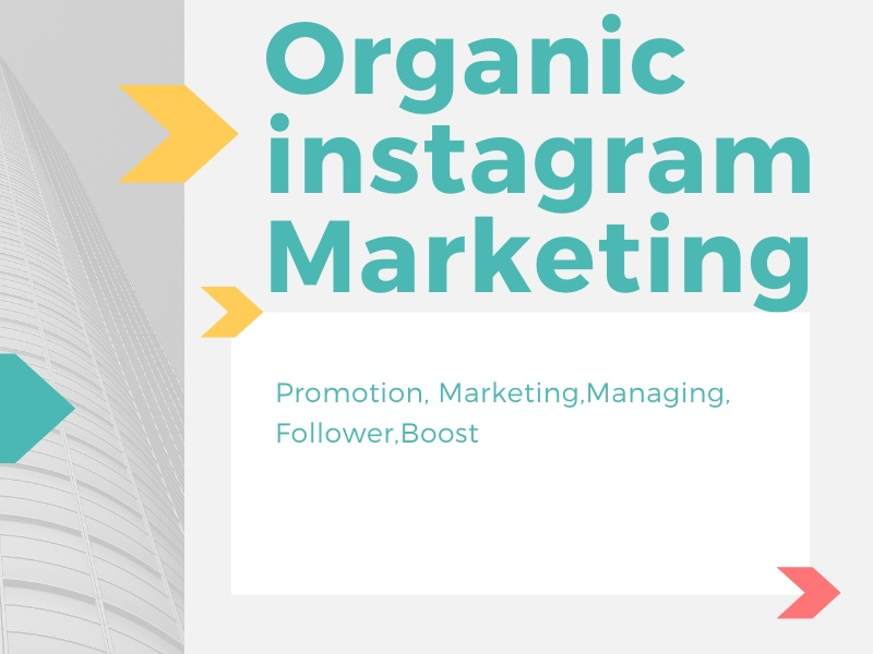 I Will Do Instagram Marketing Organically Based On Your Business