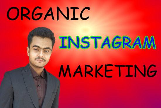 I will do organic Instagram marketing naturally growth