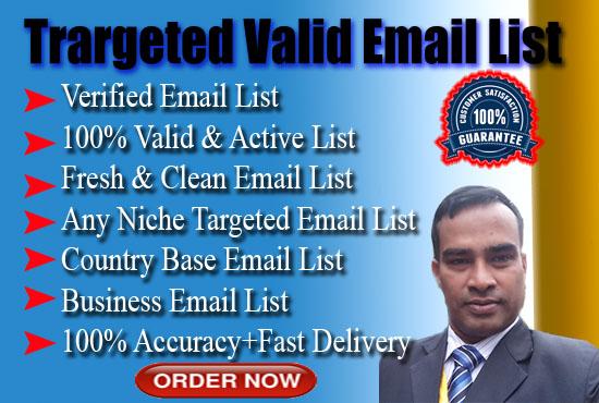 I will provide 1000 USA fresh e-mail address for Digital Marketing