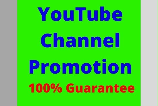 I will guarantee Youtube video promotion and marketing