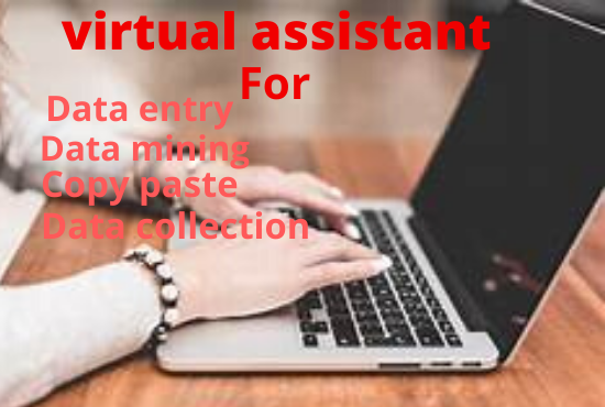 I will be a virtual assistant for data entry tasks