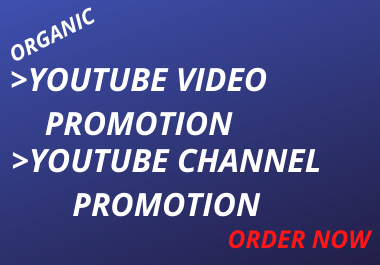 I will do organic you tube video marketing and video promotion