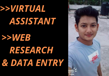 I will be your virtual assistant for data entry, data collection, data mining