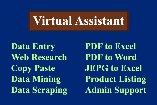 I will be virtual assistant for data entry web research