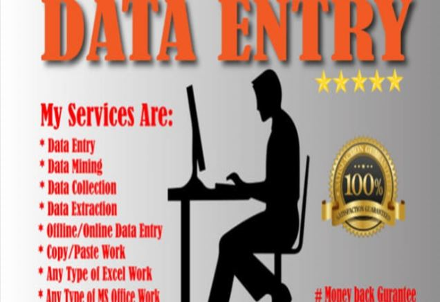 I will do in half day of any data entry copy paste and web research work
