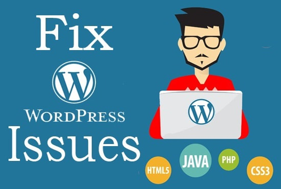 I will do bug fixing in wordpress