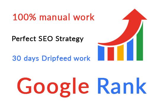 I will provide google ranking full service