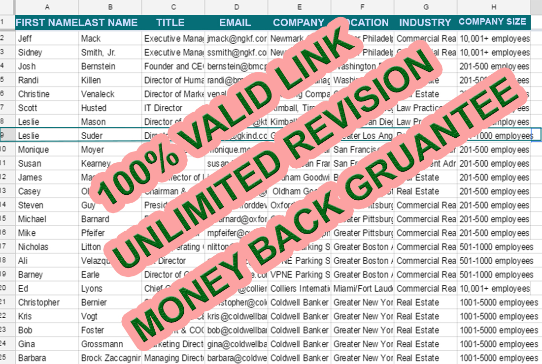 B2B Lead Generation with 100% verified Email