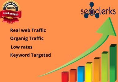 I will bring organic web traffic