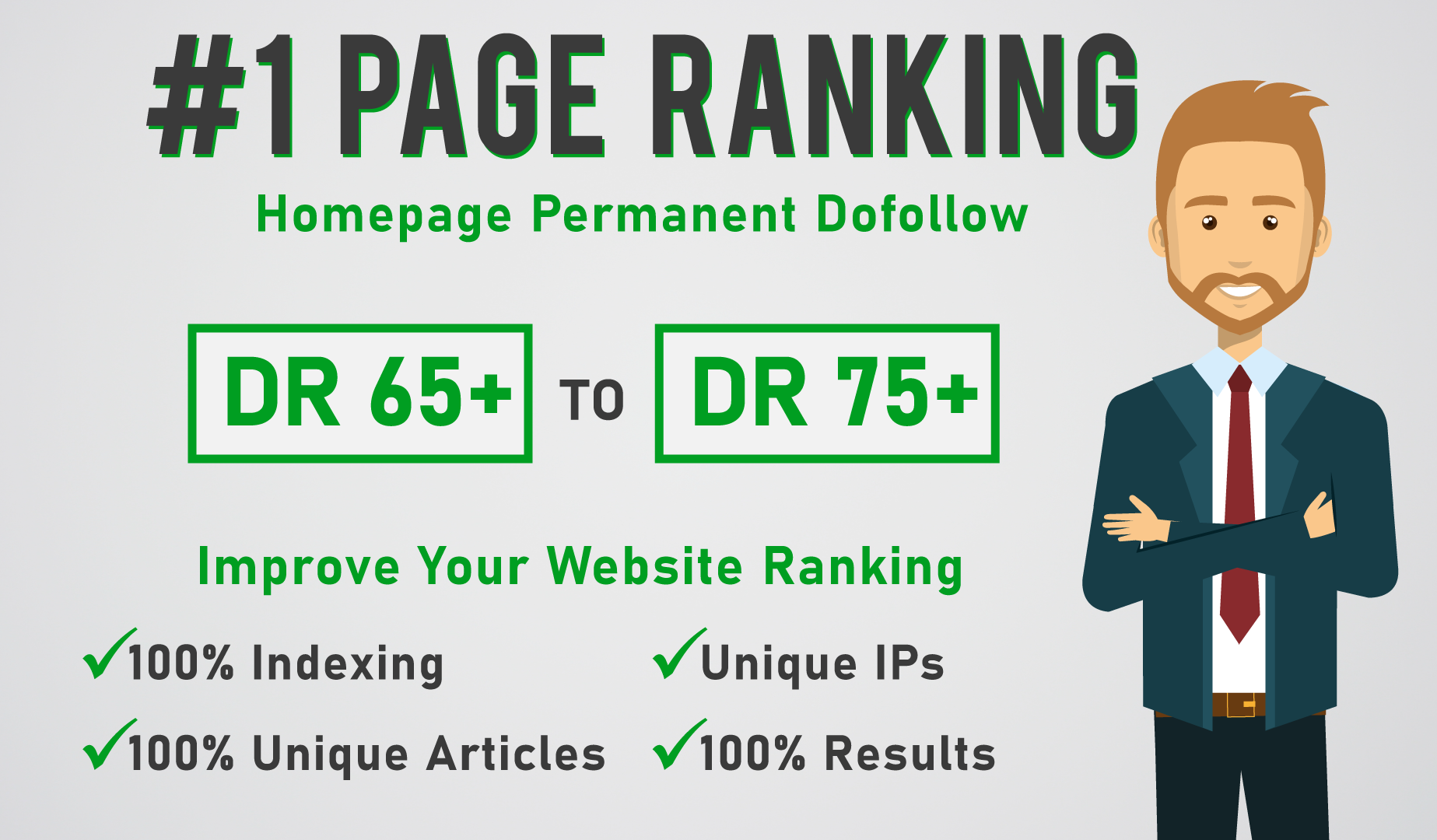 build 5 DR 65 to 75 permanent pbn backlinks for off page seo