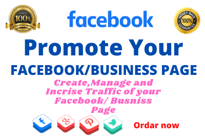 I will do Manage your Facebook/page With Organic traffic.