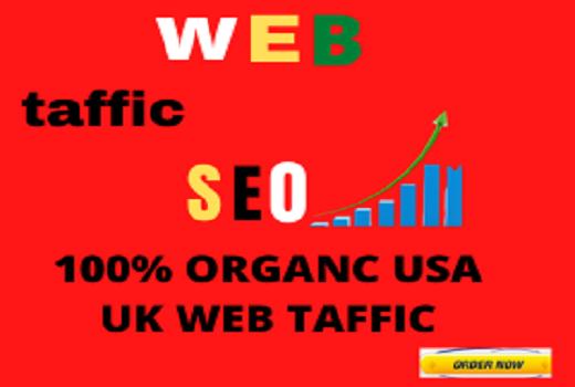 I will send organic targeted web traffic 30 days