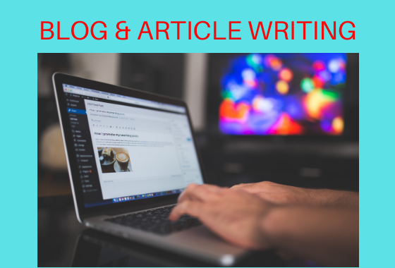 I will write high quality,  SEO optimized article or blog post.