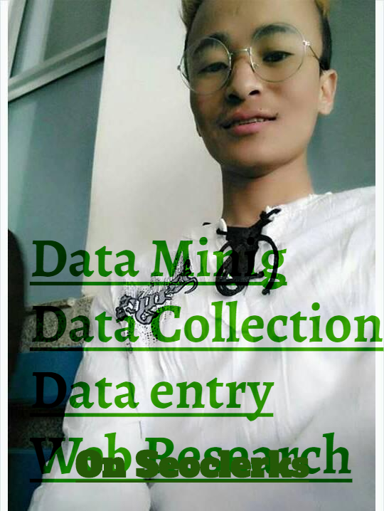 i will do data entry and internet research