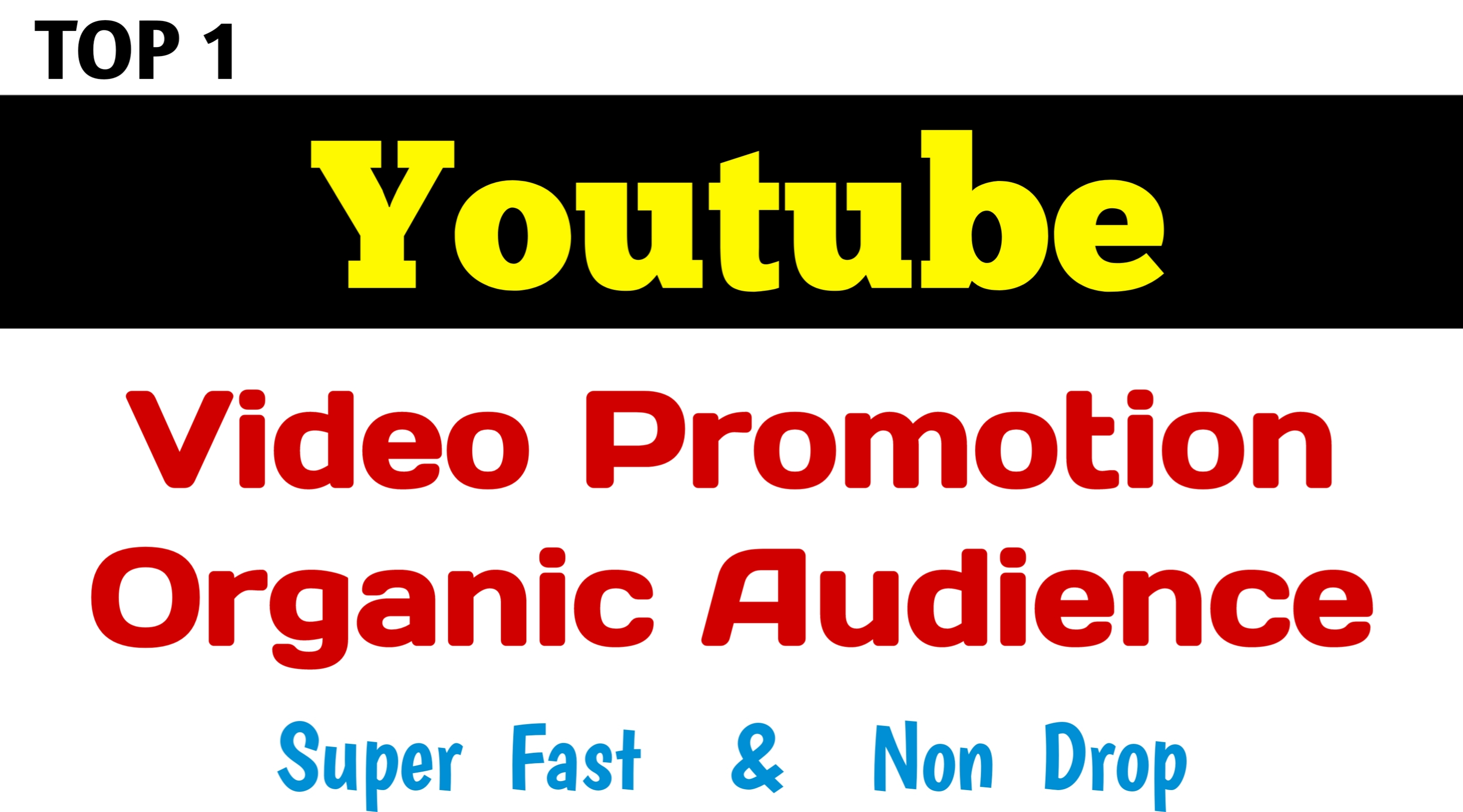 Real And Active Audience YouTube Promotion For Viral Your VIdeo