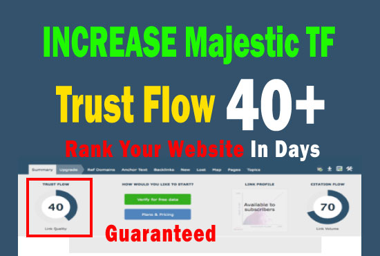 increase majestic trust flow tf 30 plus in 14 days guaranteed