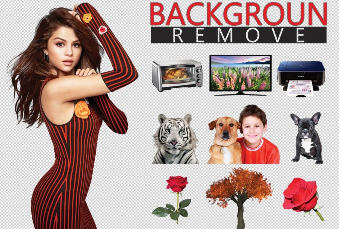 Do 100 image background removal 24 hours