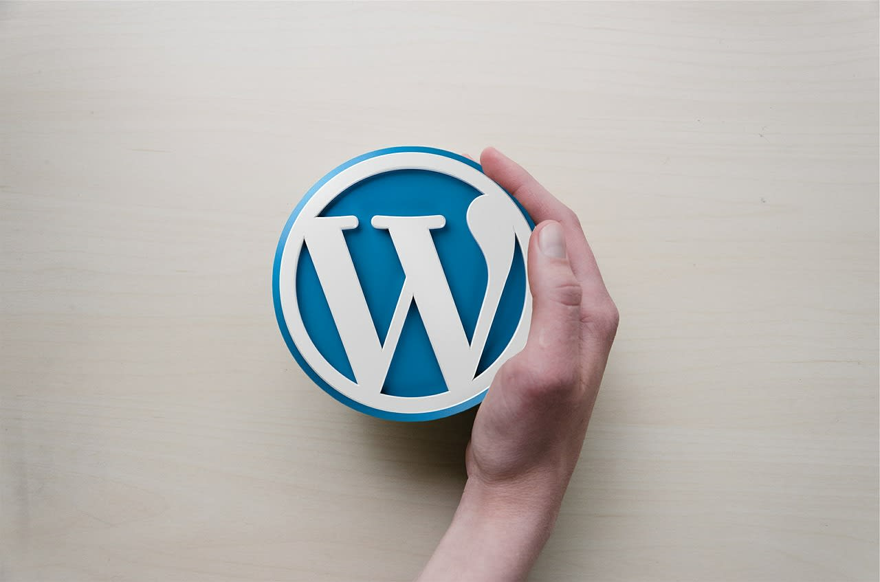 I will do your wordpress work so you do not have to