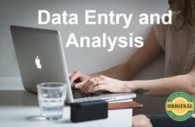 I will do data entry,  data analysis,  data cleaning,  copy paste & file conversion for you