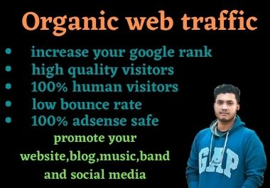 I will bring real visitors,  targeted web traffic