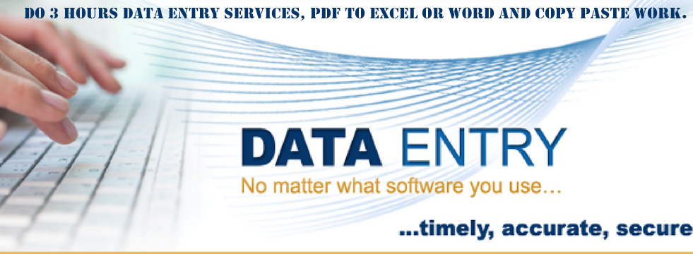 I will do 2 hours data entry services, pdf to excel or word and copy paste work