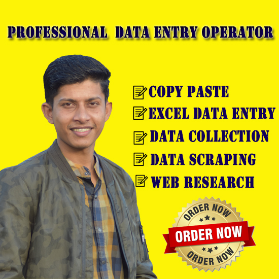 I will do data entry,  copy paste,  web scraping and excel data entry services