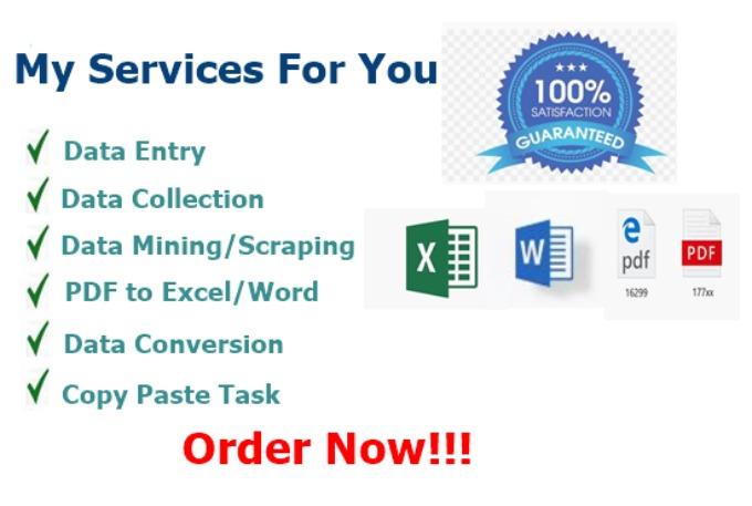 Data Entry Data Mining Data Cleansing & Excel Expert