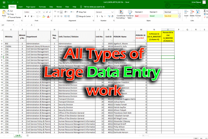 Do all kinds of data entries and Document conversions