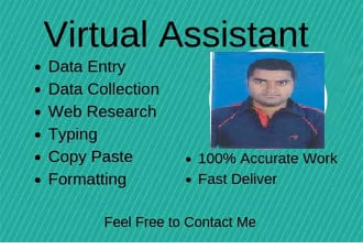 I will do data entry,  web research,  find business email and contacts