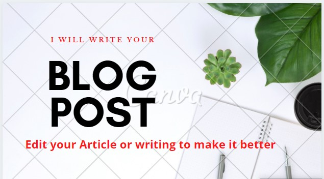 I provide write a professional blog or article
