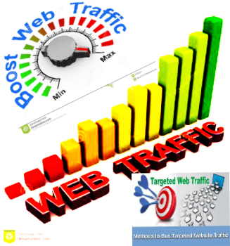 deliver 25000+ USA Real Web Traffic For your WEB site