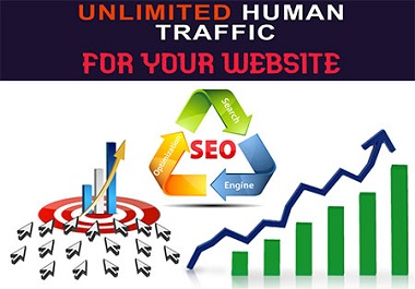 I will provide Unlimited Real Traffic for your Website