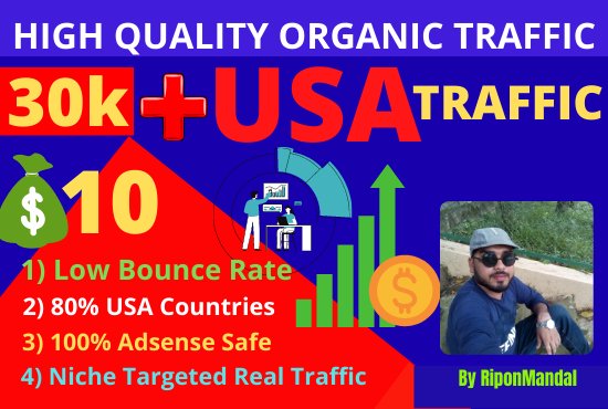I will drive 30,000 ++ Real Adsense safe USA ORGANIC visitors to your website