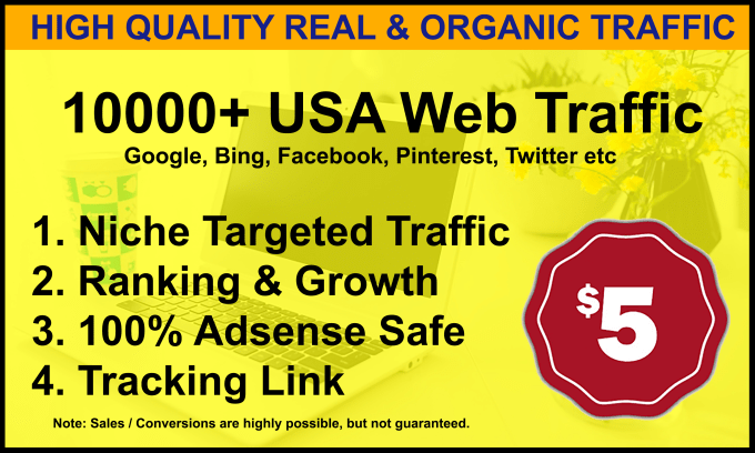 I will drive niche related targeted traffic to your website