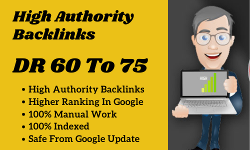 Build 20 High Authority DR 60 to 75 Homepage SEO Dofollow PBN Backlinks