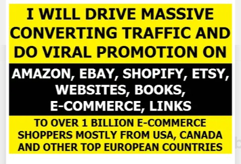I will drive traffic to ecommerce, website,  online marketing store promotion
