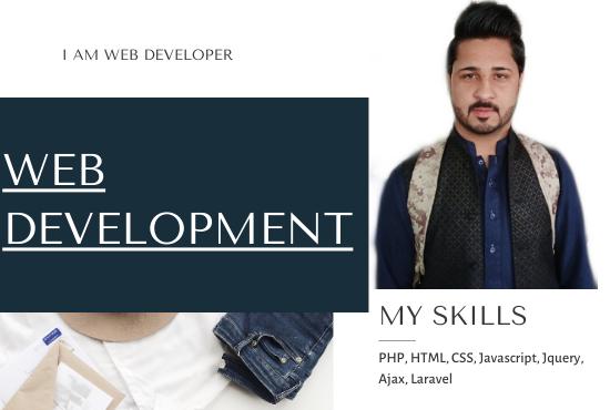 I will be your web developer,  I will do web development