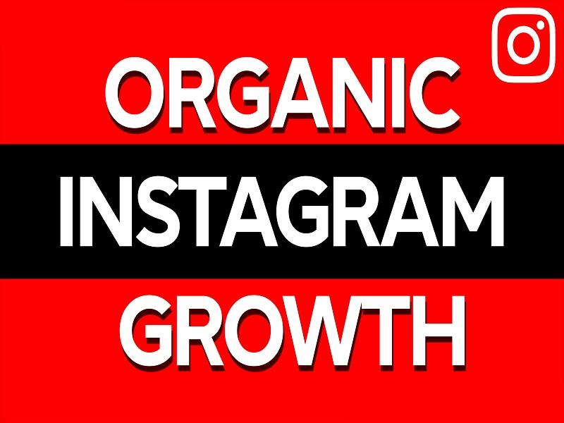 I will do fast organic instagram growth