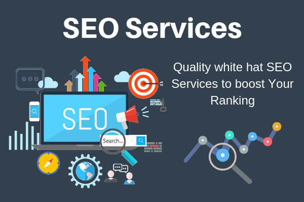 I will deliver monthly SEO service with backlinks for google top ranking