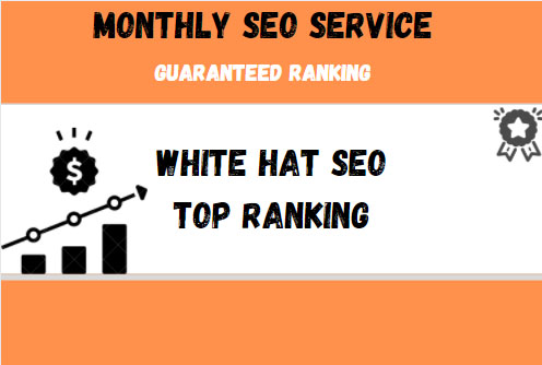 Provide a Complete monthly SEO Service With backlinks For Google Top Ranking