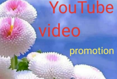 YouTube video promotion service
