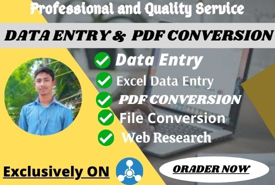I will do 12hour excel data entry and pdf conversion any format