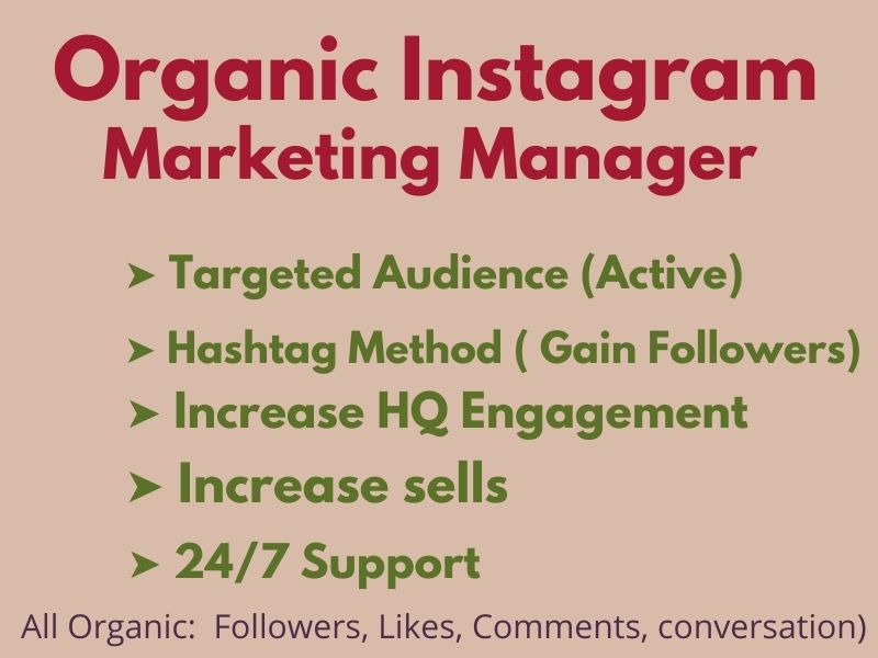 I will your instagram marketing manager and grow organic promotion