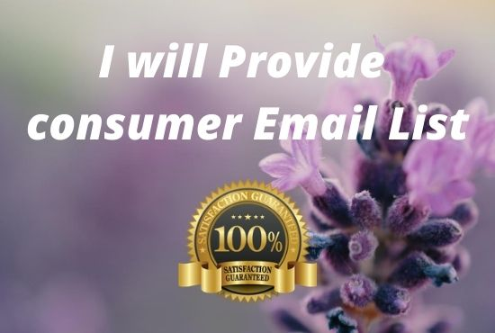 I will provide you 8 million active consumer email list FOR USA 2020
