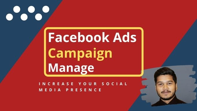 I will create,  optimize and manage Facebook Instagram business ads campaign